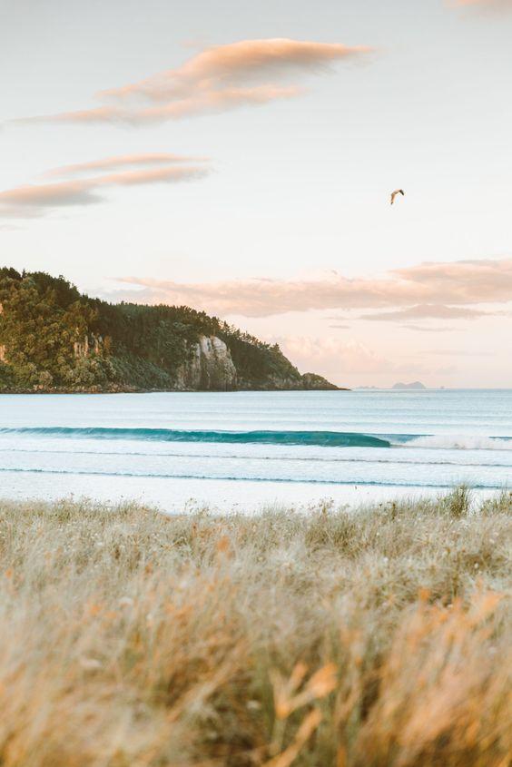 New Zealand03